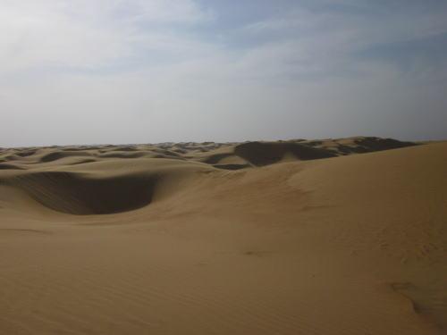 日本の四国に匹敵沙漠地帯.JPG